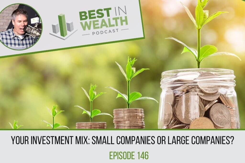 investment mix: large or small companies?